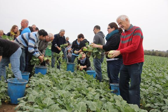CS Faculty, Staff & Students Volunteer to Help Food Rescue Organization, photo 12