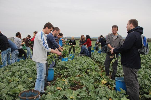 CS Faculty, Staff & Students Volunteer to Help Food Rescue Organization, photo 16