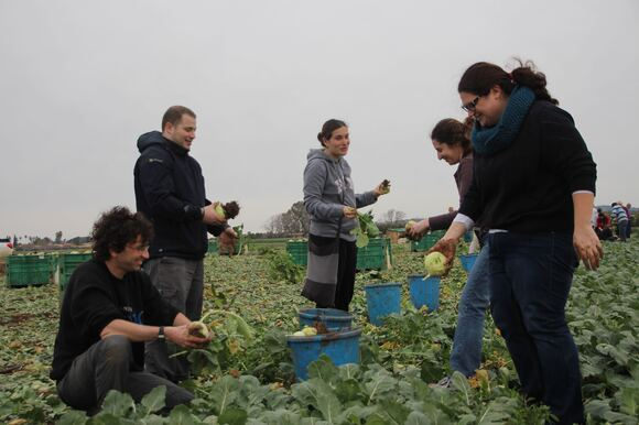 CS Faculty, Staff & Students Volunteer to Help Food Rescue Organization, photo 21